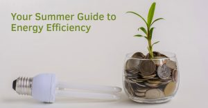 Summer guide to efficiency