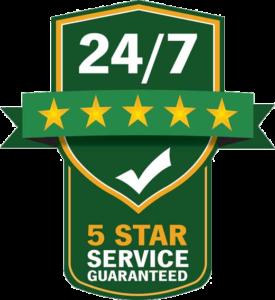 5 star service guarantee badge